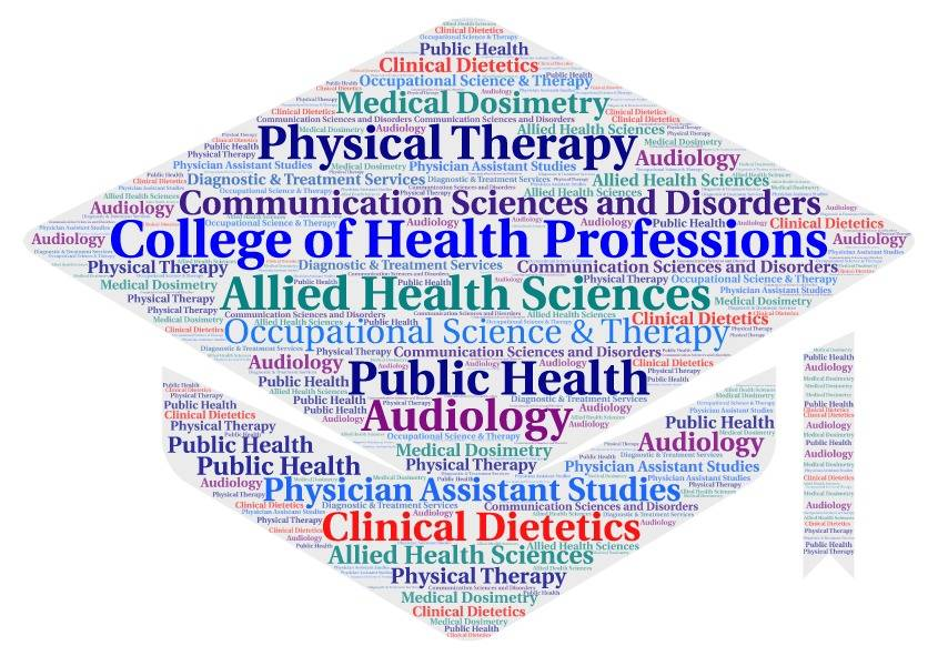 Graphic of College of Health Professions Programs